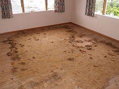 Referencie | Podľa miest | Interier studio Shag Rug, Studio, Rugs, Home Decor, Shaggy Rug, Farmhouse Rugs, Study, Room Decor, Carpets
