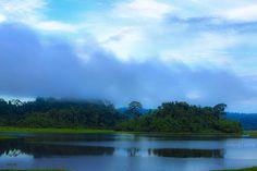 Landscape in Nam Cat Tien, Viet Nam;  photo by -clicking-, via Flickr