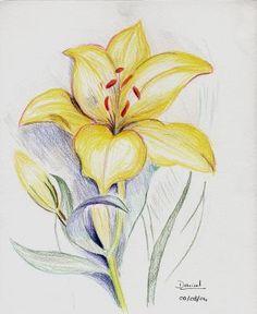 Comment dessiner une fleur de lys tutoriel apprendre dessiner pinterest comment - Comment dessiner une fleur facilement ...