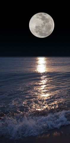 Night Moon wallpaper by ____S - ae1a - Free on ZEDGE™