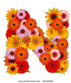 stock photo : Flower alphabet isolated on white. Letter N