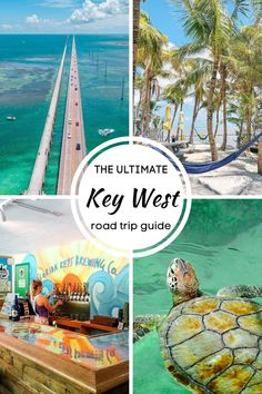 Everything you should know about the Miami to Key West Florida road trip. Learn all about the Florida Keys and things to do in Key West in the Florida Keys #floridakeys #keywest #keywestflorida West Coast Road Trip, Road Trip Usa, West Florida, Florida Keys, Best American Road Trips, Ecola State Park, Usa Cities, Florida Vacation, Usa Travel