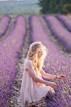 Lovely Lavender Fields