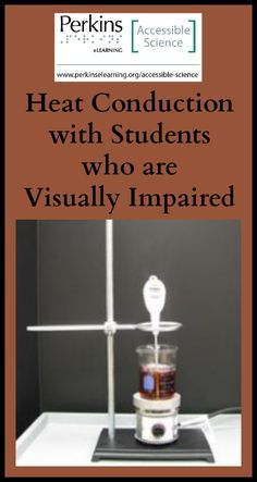 visually impaired students research papers