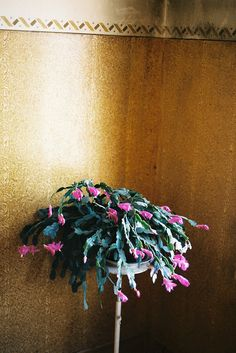Untitled by Matilde Viegas, via Flickr