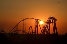 Raptor at Sunset (Cedar Point, Sandusky OH)Too pretty