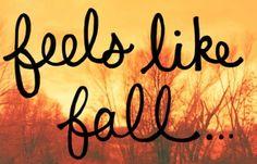..feels like fall …