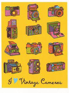Vintage Cameras, ScreenPrint