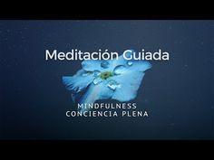 MINDFULNESS MEDITACIÓN GUIADA CONCIENCIA PLENA - YouTube Dalai Lama, Healthy Mind, Youtube, Carrasco, Chakras, Barbacoa, Pilates, Angeles, Spa