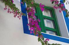 Gran Canaria 2014 Canario, Frame, Photos, Home Decor, Homemade Home Decor, Pictures, A Frame, Frames, Hoop
