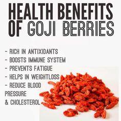 BIO E® World: Health benefits of Goji Berries