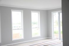 Dulux Tranquil Retreat 100%. Should have been half strength. Trims are Dulux Vivid White which is a beautiful crisp stark white with no hint of any other colour. Ceiling and cornices were M's standard, Lexicon Quarter