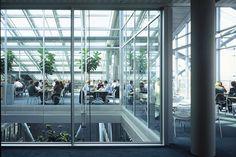 ING House / MVSA Architects