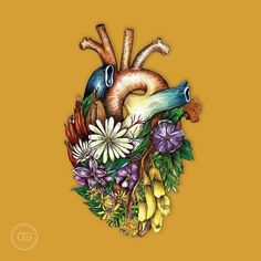 Heart and nature illustration by CIP Design Studio