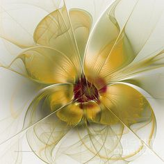 Silky Elegance Digital Art