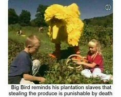 "Big Bird is such a good ""employer"""