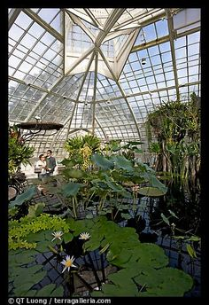 The Conservatory in Golden Gate Park