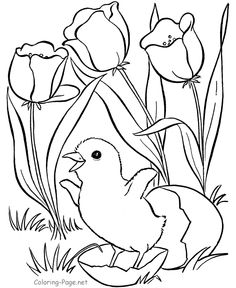 Spring Coloring Book Pages - Egg hatching