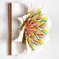 Book x Flower x Rainbow #randomstuffjetaime