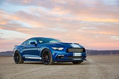 2017 Ford Mustang Shelby 50th Anniversary Super Snake Mustang - 1 of 500