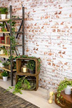 papiers peints trompe l'œil effet brique et déco en plantes vertes d'intérieur