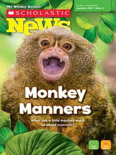 Sept 2015 - Monkey Manners