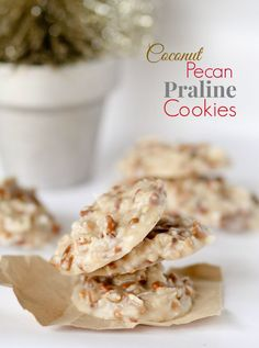 No Bake Coconut Pecan Praline Cookies recipe. They are SO simple to whip up (no baking!!) and have the perfect texture and taste — praline-ey, pecan-ey, and coconut-ey.  These are officially a new Holiday staple around here!!