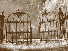Image detail for -Cemetery Gates, Faunsdale, AL