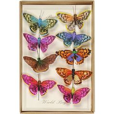 Butterfly Magnet Set $13.95