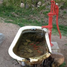 Pond and fountain I just saw at Grand Canyon Ranch! So cute with the fishes in the old tub!