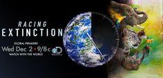 DISCOVERY estrena a nivel mundial el documental 'RACING EXTINCTION: CUENTA REGRESIVA' | El ExtraMedios