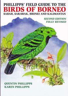 For the average birdwatcher visiting or working in Borneo, Phillipps Guide is much the best book to get. For the expert,  Susan Myers Bird of Borneo(publ. New Holland) will be needed as well!  This is because it is more detailed as an identification guide, with descriptions of juvenile and female plumages, and graphic analyses of songs. Myer's is the favourite among professional bird guides, Phillipps amongst most of their customers.