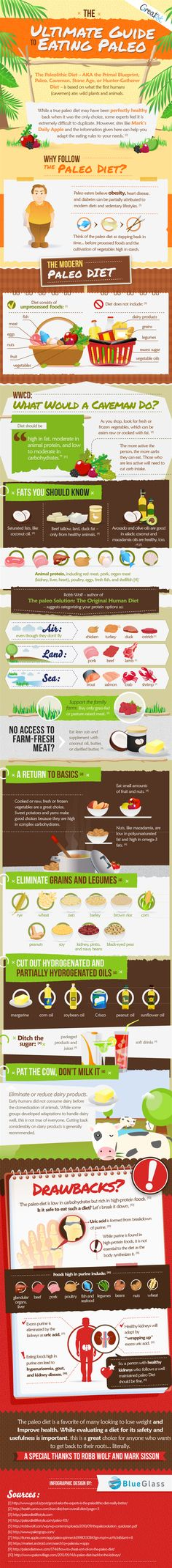 Shaping Up with the Paleo Diet #Shaping #paleo #Diet #Infographics