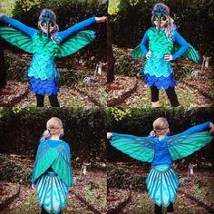 Hummingbird costume