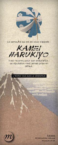 A l'occasion de l'exposition Hokusai au Grand Palais, libérez le samouraï qui sommeille en vous et découvrez les couleurs de votre clan...
