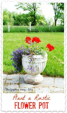 Plant a Garden Flower Pot .