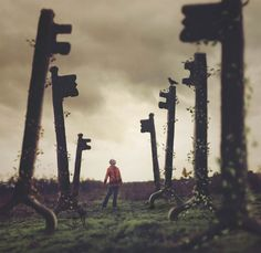 Algumas imagens poéticas e cativantes estão localizadas entre o sonho e a realidade…