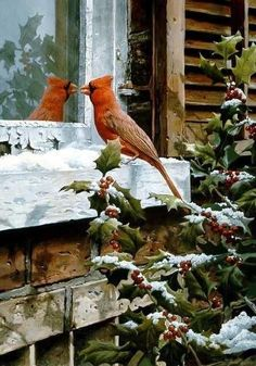 Rusty reds and browns, grays, evergreen
