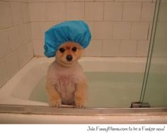 Its Time For A Very Cute Bath