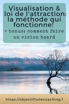 Visualisation: comment attirer à soi ce qu'on désire Positive Mind, Positive Attitude, Positive Vibes, Carl Jung, Reiki, Coaching Personal, Romance Tips, Miracle Morning, Visualisation