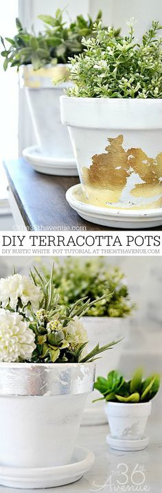 DIY Silver and Gold Terracotta Pots.