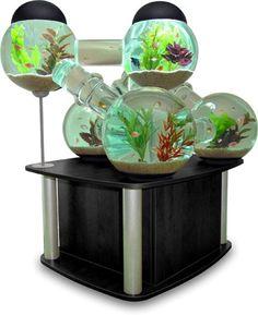 I would love this fish tank!  (Silverfish Aquarium by Octopus Studios)