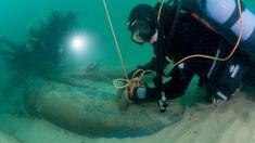 Portuguese 400 year old shipwreck found off Cascais Collective Identity, Spice Trade, Juicing Benefits, Image Caption, Shipwreck, A Decade, Coat Of Arms, Anthropology, Year Old