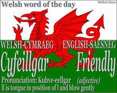 #Welsh word of the day: Cyfeillgar/ #Friendly