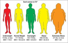 The Truth About Your BMI