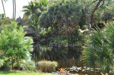 Mounts Botanical Gardens in West Palm Beach...Beautiful! https://scontent-b.xx.fbcdn.net/hphotos-xpa1/t1.0-9/10348996_724122597652046_6464128665384403761_n.jpg