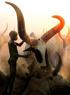 Carol Beckwith & Angela Fisher, Dinka