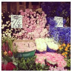 Columbia Road Flower Market - busting with colour and the sweet smells of jasmine and lilies
