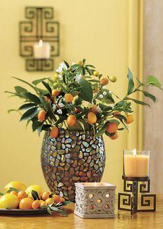 Citrus Sunshine!  Citrus Peel and Sage candles, Aurora Mosaic Hurricane, Garden Sanctuary Votive Holder, Olympus Candle Sleeve, Olympus Wall Sconce.