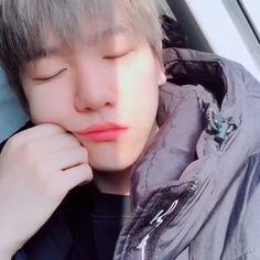 변백현 / Baekhyun / Baekhyun EXO / Baekhyunee puppy / Baekhyun cute / Hot Baekhyun / Бэкхён °♡